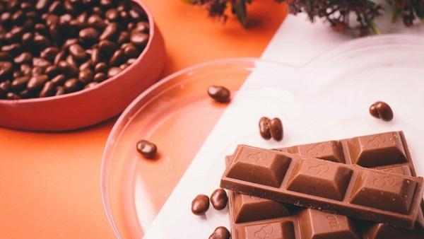 チョコレートリサイクル用 異物除去装置