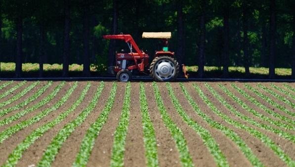 農薬製造用 遠心分離機